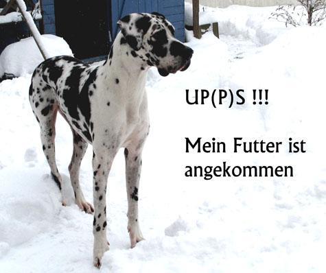 Sara bei www.fuettern-mit-spass.de